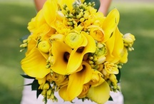 Spring Wedding decor  / Spring wedding colors with pastel flowers / by Shaadi Bazaar