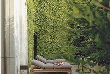 Outdoor/Garden/Gardening / by Portobello