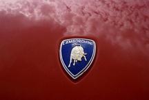 Lamborghini / by Randy Cotton