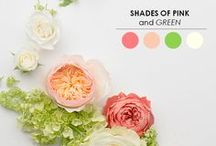 Color Inspiration Boards / Color inspiration for your wedding, events or home / by Divinity Buggs