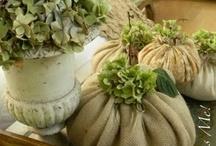 halloween/fall / by Loretta Ferrell