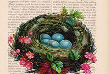Húsvét - Easter / by Noémi Mounier
