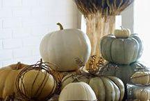 Autumn Design / by Mara Monaghan