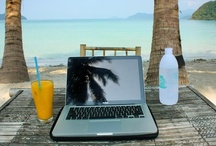 Digital Nomad Lifestyle / Travel and Work Anywhere / by Global Goose Travel