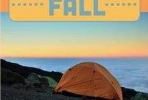 Camping Fun / by 20 Something Syndrome