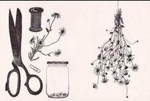 Illustration / by Jenny Magno