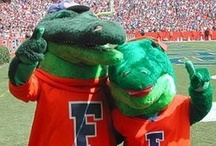 Go Gators!  / by Sheri <3