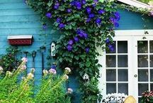 Doors & Windows / by Ladybug Wreaths, Nancy Alexander