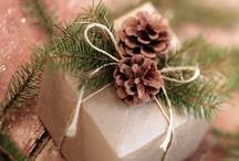 Merry Christmas / by Hope Faith