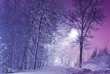 Winter Wonderland / by Robyn Frandemo