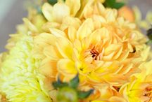 Yellow Weddings / Yellow Wedding Inspiration / by Style Unveiled®