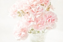 Pink Weddings / Pretty Pink Wedding Inspiration / by Style Unveiled®