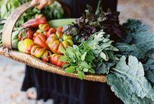 Farm Fresh / by C.C. Savage