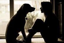 Puppy Love / by Rachel Lazanis