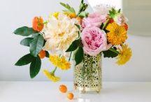 Blooms / by Leslie Sauceda