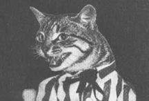 k i t t y  c h a n / CATS ALL OVER.  / by MaDonna Flowers Sheehy