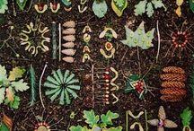 Garden love  / by Jessica Neciuk