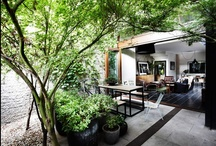 Bringing the outdoors in / by Jumana Jacir