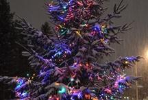 Christmas Trees / by Gail Malec