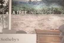 A tree in Focus - Sotheby's / by Anne Fontaine