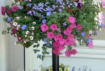 outdoor ideas / by Linda Lewis