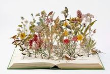 Paper Things  / Fragile and precise paper art. / by Eva Eland