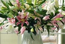 Floral Arrangements I Love / 