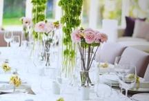 Teaparties or Weddings / by Zlatina Gocheva