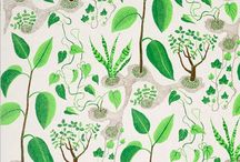 Wallpaper and Print Design / by Elinor James