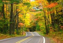 My Neck Of The Woods! / SAY YES TO....Beautiful Northern Wisconsin & UP of Michigan! / by Peg Winters-Kinziger