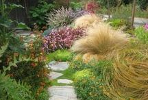 Gardens / by Leda Prata