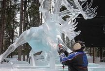 Winter Wonderland  / by Alaska Travel