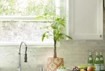 kitchen remodel / by Jennifer Miron
