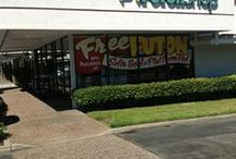 The Futon Shop Concord / Pleasant Hill / 548-A Contra Costa Blvd Pleasant Hill, CA 94523 (925) 609-9377 / by The Futon Shop Organic Futons & Mattresses