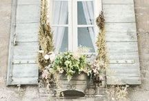 Project Ideas for my Home Exterior / by Amy Renea