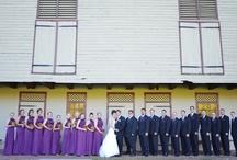 Wedding Photos - Devon / by Amy Renea