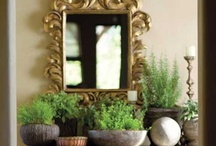 Arizona artistry / by Daphne Davis, Published Interior Designer