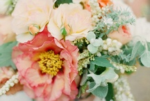 Flowers + Bouquets / by Gianna Rotunno