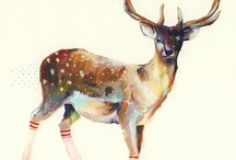 Art for my walls / by Jennifer Cisney