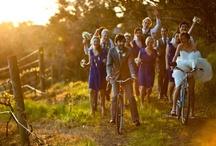 Wedding Photo Ideas / by Hazel Grace