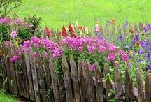 Farm & Garden / A garden and barn for vegetables, flowers, animals, and birds.  / by Kelly Smith