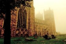 The University / In the city of Durham, 4 hours from London. / by Tara Cronin