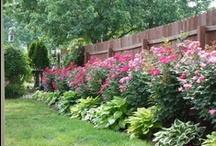 My LOVE of Gardens / by Carla Davidson