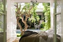 Interiors / by Susan Powers
