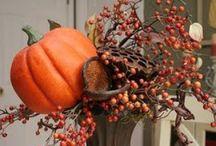 Fall / by Robin Nicholson