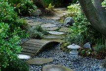 Garden / by Lydia Kinsey