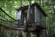 Treehouses / by Airbnb