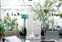 Living space inspiration / by Wild Spirit