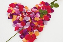 Valentine's Day / Gifts, Ideas & Inspiration for a perfect Valentine's Day / by Floraluniverses