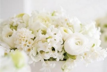 pretty florals / by sharon atLayers